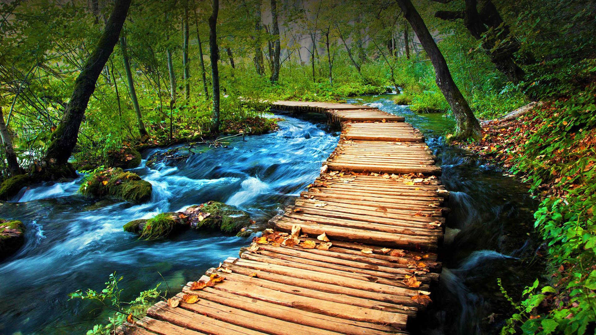 Amazink Plitvice lakes tour from Split