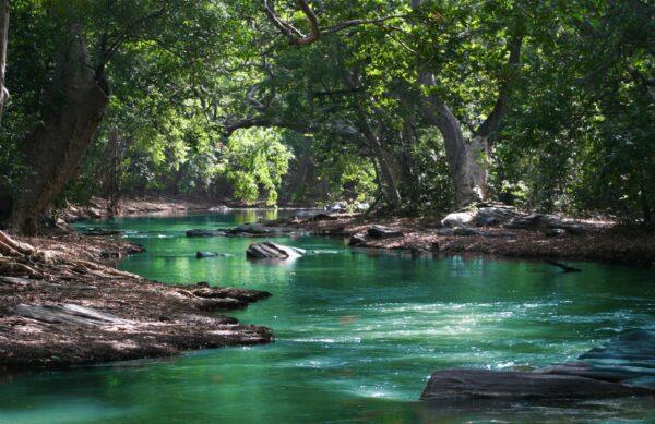 One day Tour plitvice Lakes