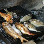 grilled fish dalmatian